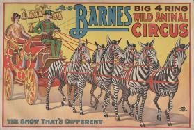 Al. G. Barnes Big 4 Ring Wild Animal Circus: Zebras Pull Parade Buggy