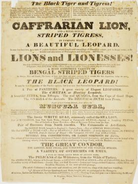 Lower portion of a playbill for a menagerie, possibly Wombwell's