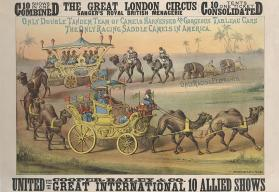 Cooper & Bailey, Great London: Only Double Tandem Team of Camels