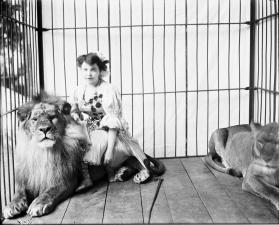 Portrait of Madame Scheel with Lions