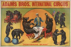 Adams Brothers International Circus: Performing Bears