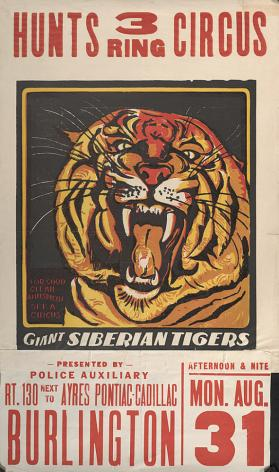 Hunt Brothers: Giant Siberian Tigers