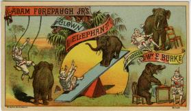 Adam Forepaugh Jr's: Clown Elephants introduced by Wm. E. Burke