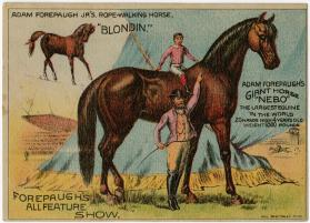"Adam Forepaugh: All Feature Show; Giant Horse ""Nebo"" and Jr.'s ""Blondin"""