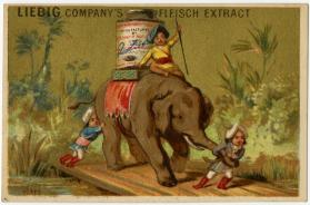 Elephant carrying a Liebig jar