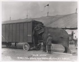 """Old John"" Ringling Bros. and Barnum & Bailey Circus"