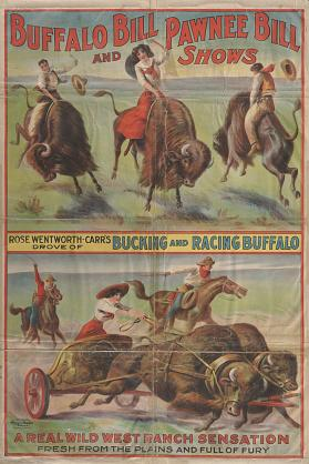 Buffalo Bill & Pawnee Bill: Bucking and Racing Buffalo