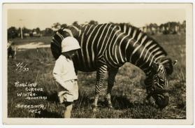 Child and zebra