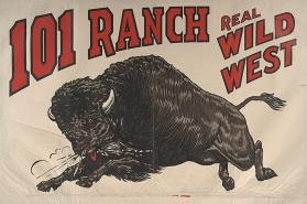 101 Ranch Wild West: Bison