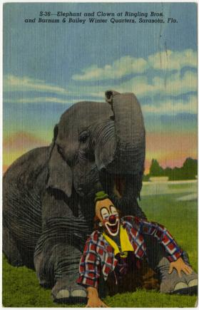 Elephant and Clown at Ringling Bros. and Barnum & Bailey Winter Quarters, Sarasota, Fla.