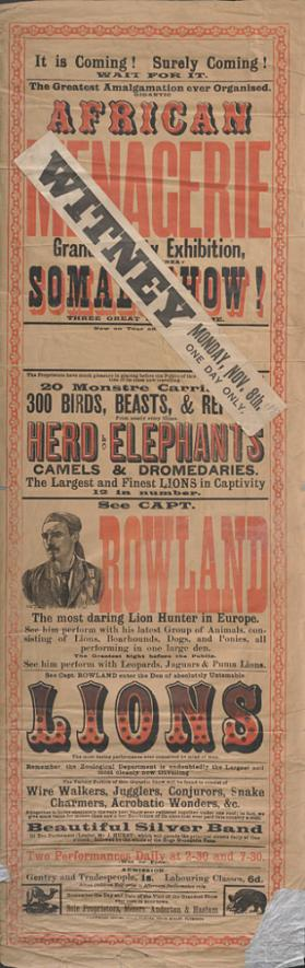 African Menagerie: Rowland