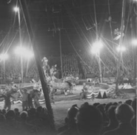 Ringling Bros. and Barnum & Bailey Circus 1951