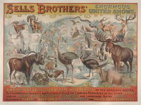 Sells Bros. Enormous United Shows: A Magnificent Collection of Rare Wild Beasts