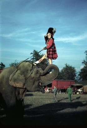 Bella Attardi in Guard Garb on an Elephant