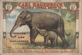 Hagenbeck's Trained Animals: The Largest Mother and Smallest Baby Elephant In the World