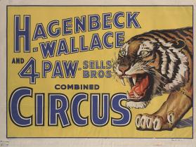 Hagenbeck-Wallace & Forepaugh Sells Bros.: Tiger