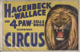 Hagenbeck-Wallace & Forepaugh Sells Bros.: Lion